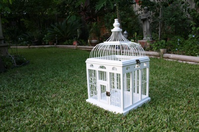 birdcage1