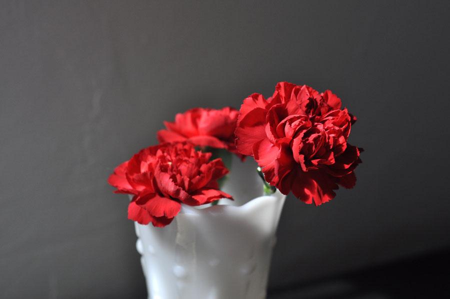 hotelhavana_roses